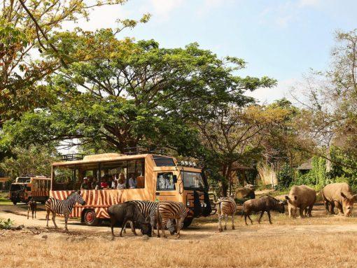 Bali Safari Marine Park