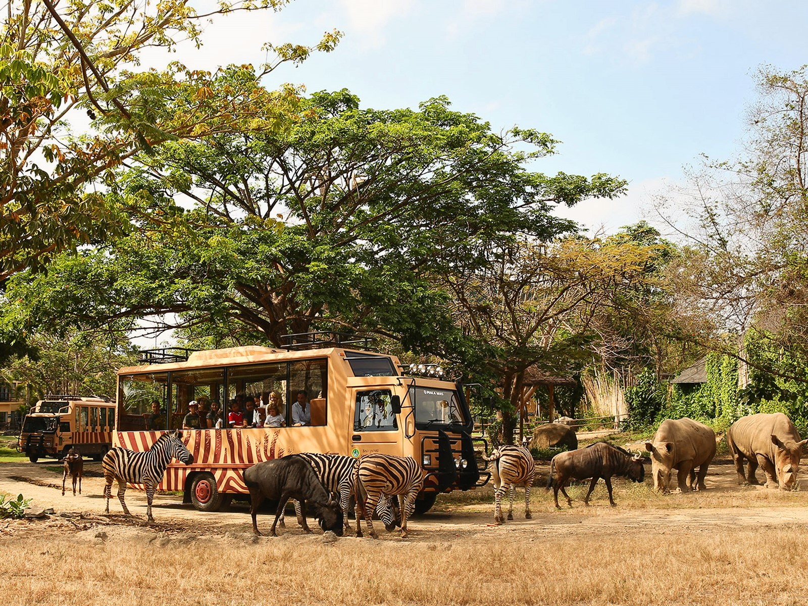 26% Off Bali Safari and Marine Park Tickets - Wandernesia