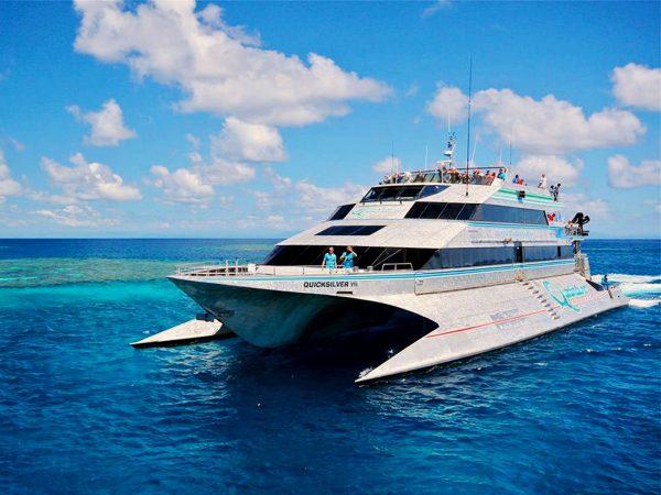 Quicksilver Cruise