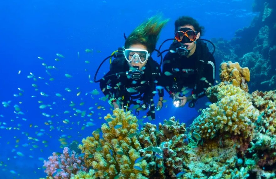 diving in bali top 10 things to do in bali
