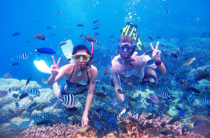 snorkeling menjangan island cool things to do in bali