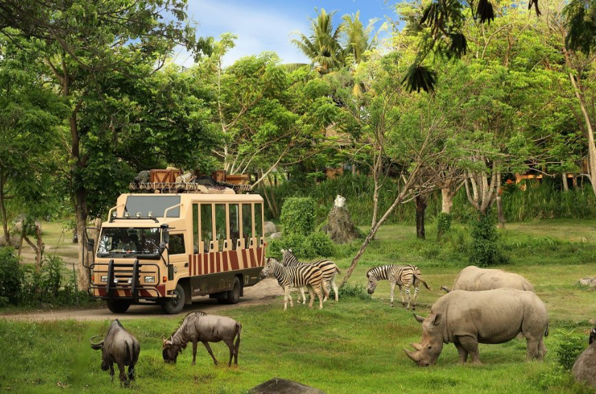 Bali Safari Marine Park top 10 things to do in bali