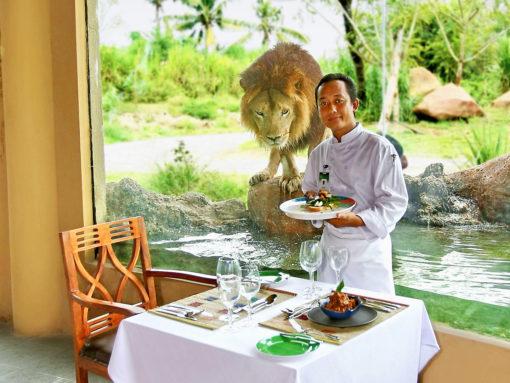Breakfast with Lions Tsavo Resto