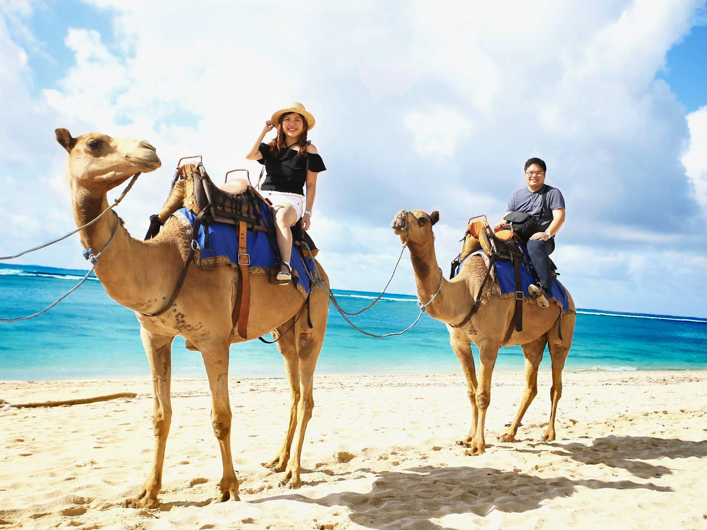 Hasil gambar untuk Bali Camel Driving
