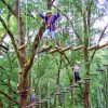 TreetopBaliAdv6