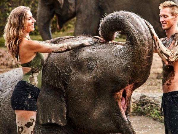 Elephant Mud Fun Experience (3)