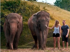 Elephant Mud Fun Experience (4)