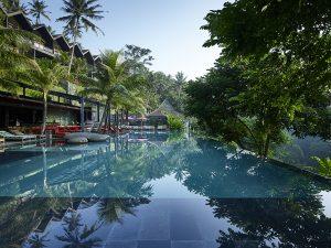 Jungle-Fish-Pool-and-Bar