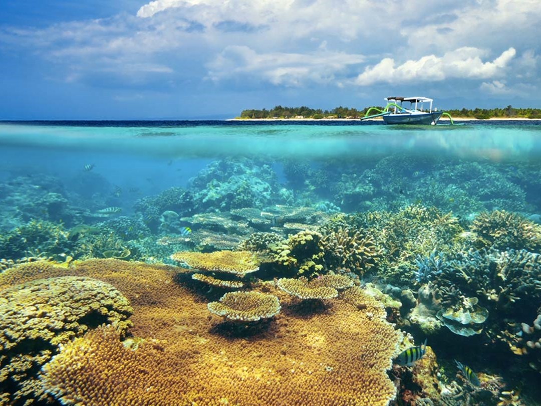 Lombok Fishing Day Tour (2)