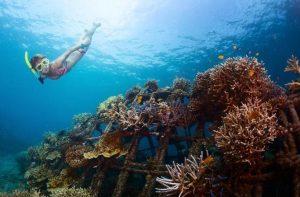 Snorkeling Tulamben Wreck