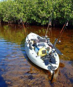 Mangrove Forest Bali Canoe Eco Tour (4)