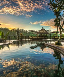 Nandini Jungle Resort and Spa (7)