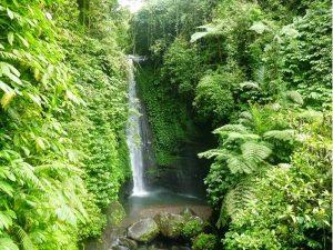 Tetebatu Waterfall