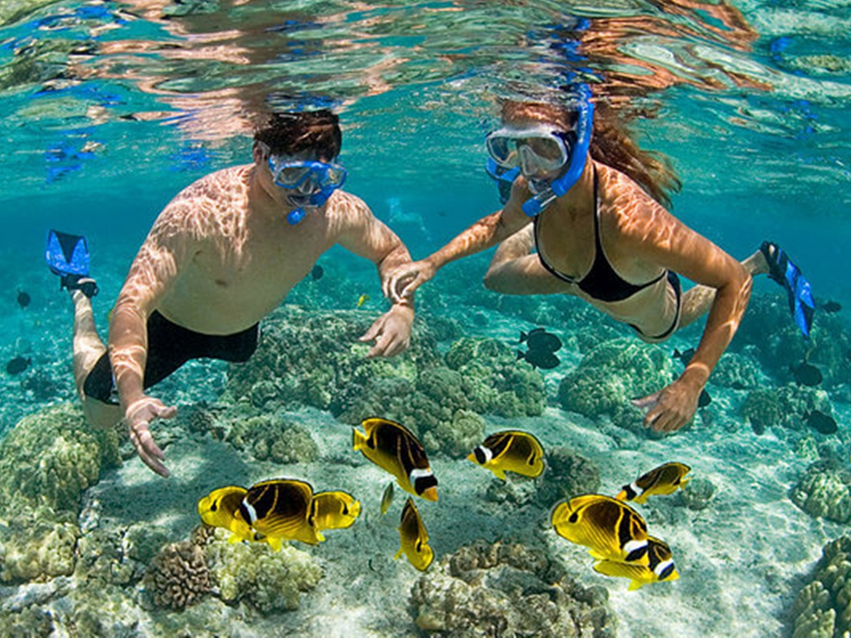 Pink Beach Lombok Snorkeling Tour: All Inclusive