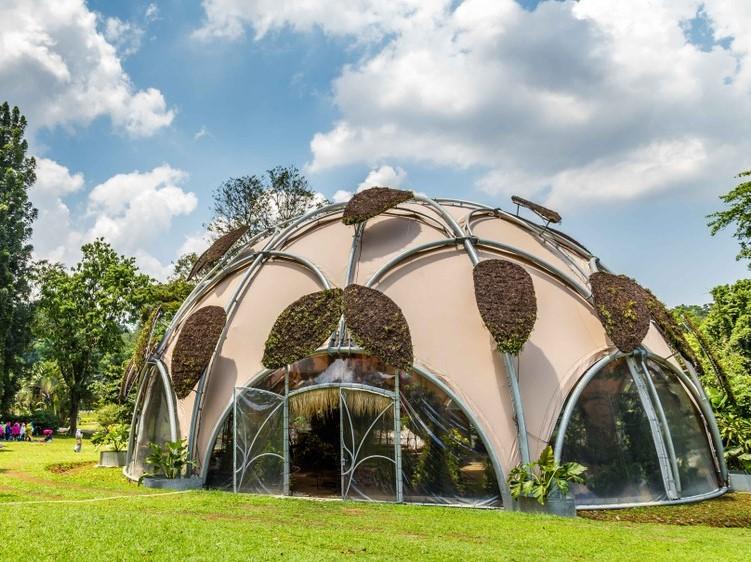 Bogor Botanical Garden Tour From Jakarta All Inclusive Wandernesia