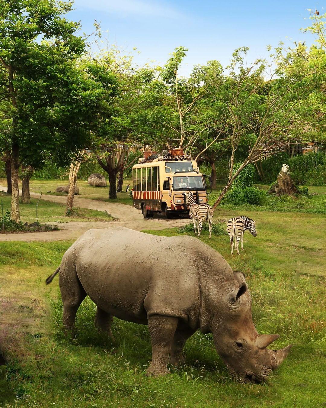 What to See in Bali; Bali Safari and Marine Park