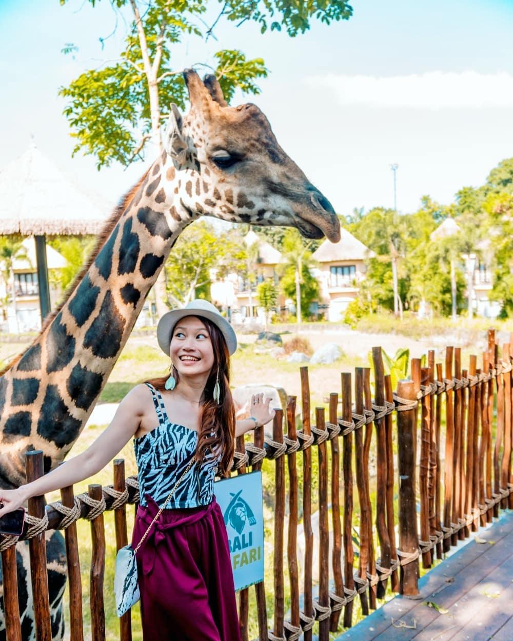 Activities in Bali; Bali Safari and Marine Park