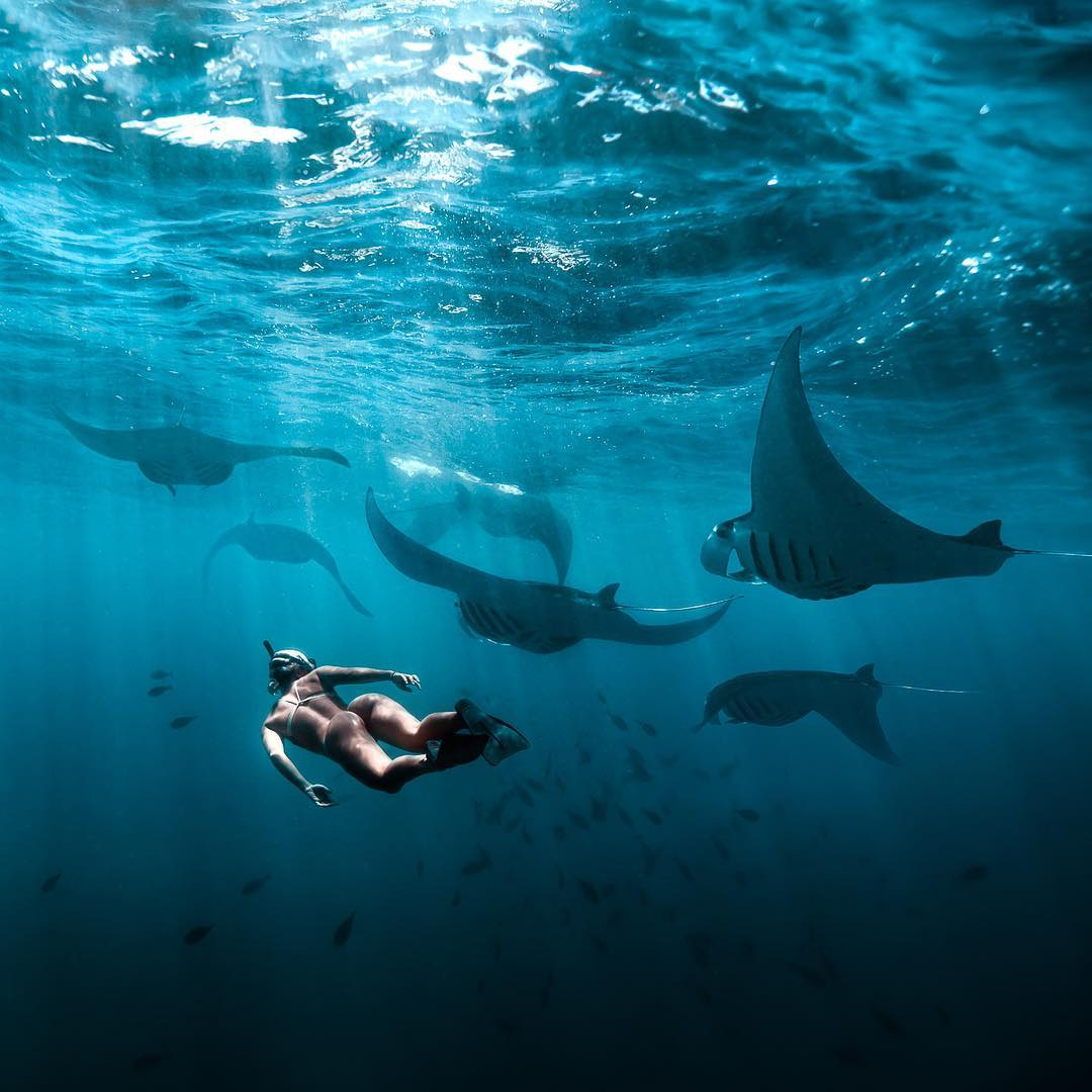 What to See in Bali; Bali Snorkeling