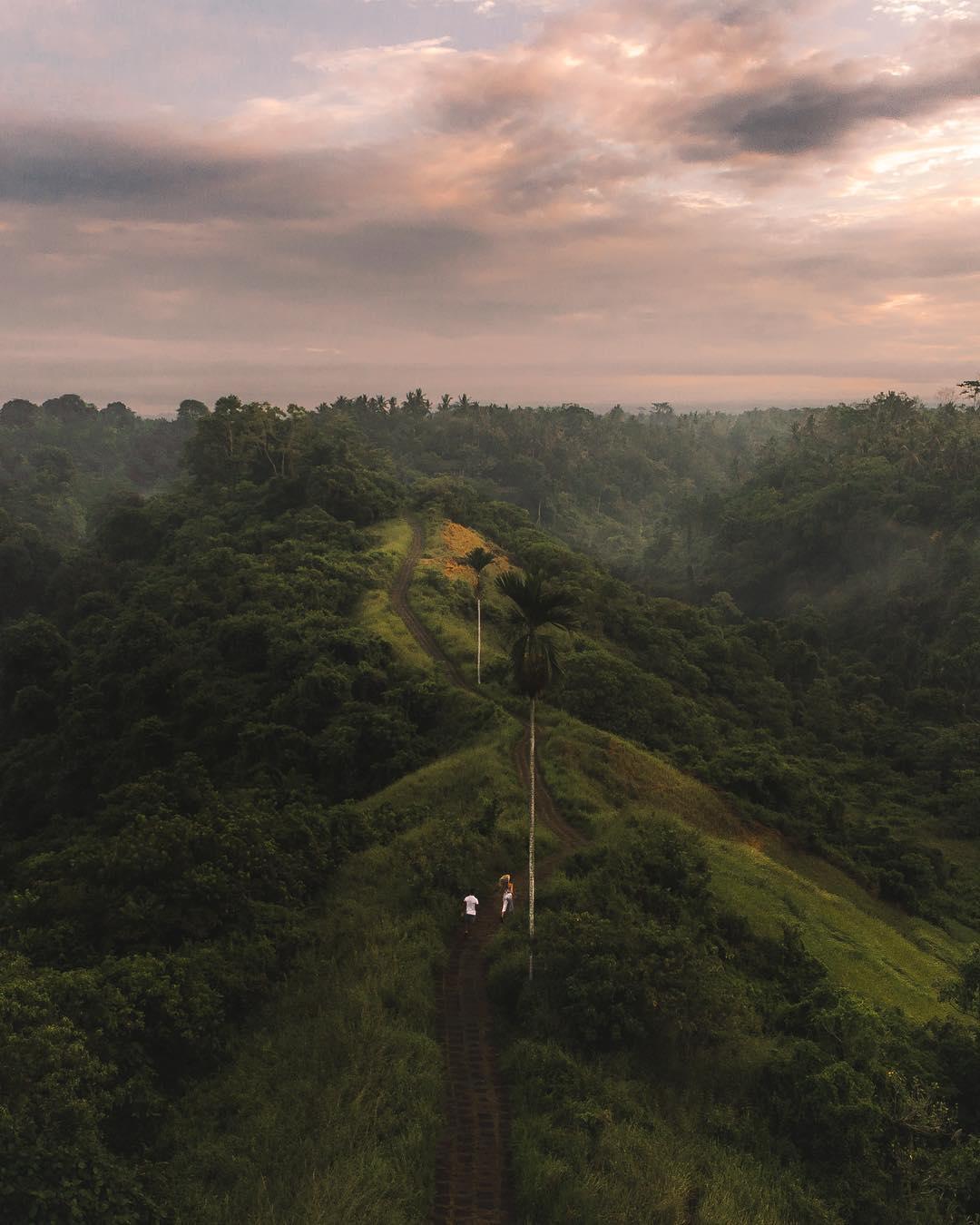Places to See in Bali; Campuhan Ridge Walk