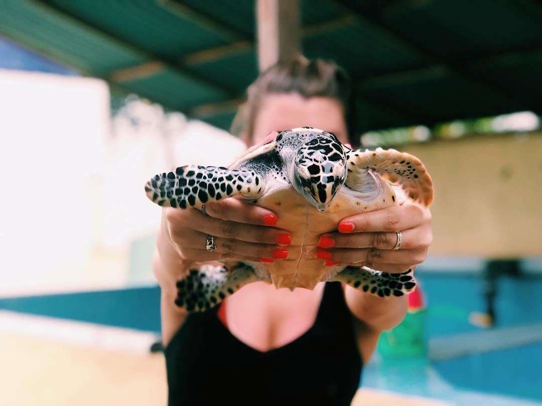 Volunteers in Bali; Go Eco