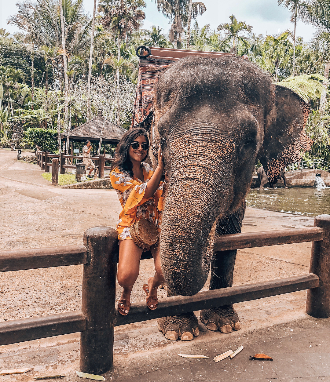 Places to See in Bali; Mason Elephant Park