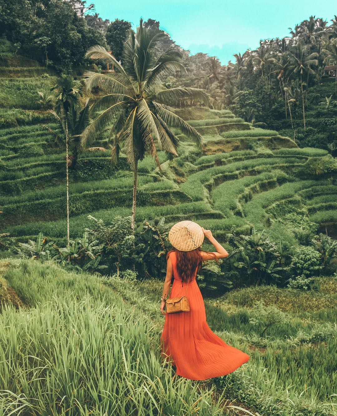 What to See in Bali; Tegalalang Rice Terraces