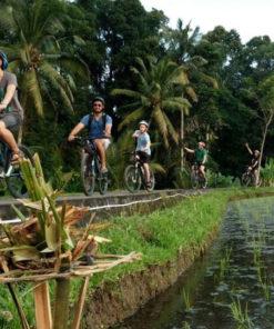 Eco Cycling